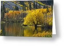 Lundy Lake In Fall Greeting Card