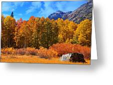 Lundy's Fall Show Greeting Card