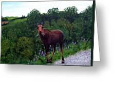 Lupine Loving Moose Greeting Card