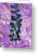 Lupine Negative Greeting Card