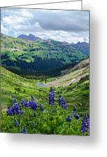 Lupine Over Valley Greeting Card