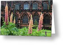 Lupines At Chester Cathedral 6805 Greeting Card