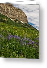 Lupines On The Hillside Greeting Card