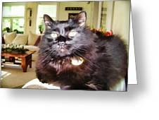 Lura Leigh Kitty Greeting Card