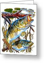Lurking Bass Greeting Card by Carey Chen