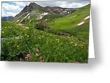 Lush Colorado Summer Landscape Greeting Card