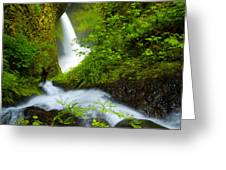 Lush Gorge Falls Greeting Card