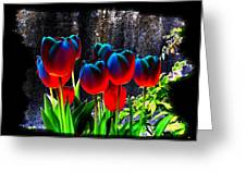Lustrous Tulips Greeting Card