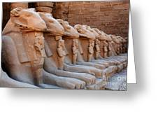 Luxor Temple 3 Greeting Card