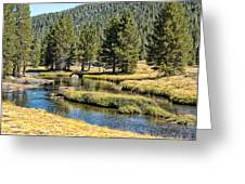 Lyell Canyon Greeting Card