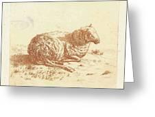 Lying Sheep, Ernst Willem Jan Bagelaar Greeting Card