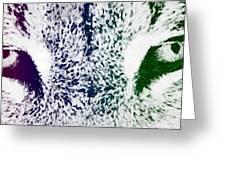 Lynx Eyes Greeting Card