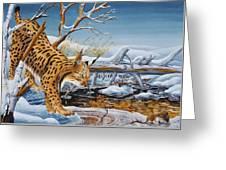 Lynx Greeting Card