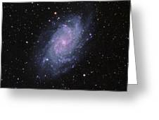 M33--the Triangulum Galaxy Greeting Card