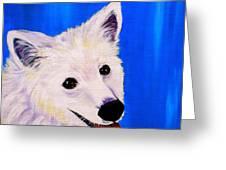 Mac Greeting Card by Debi Starr