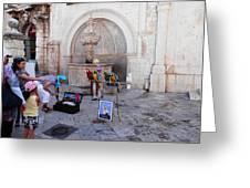 Macaws In Dubrovnik Greeting Card