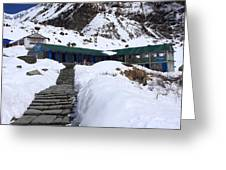 Machhapuchchhre Base Camp, Nepal  Greeting Card
