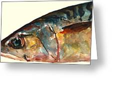 Mackerel Fish Greeting Card