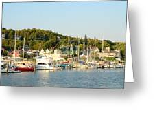 Mackinac Island Greeting Card by Brett Geyer