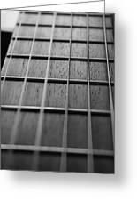 Macro Guitar Strings Greeting Card