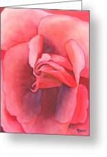 Macro Rose Greeting Card