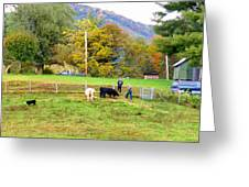 Mac's Farm In Balsam Grove 2 Greeting Card