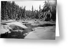 Madawaska River Greeting Card