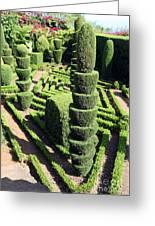 Madeira Botanic Gardens Topiary Greeting Card