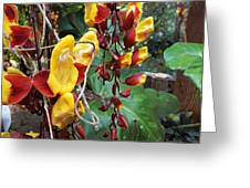 Madikiri - Phool Greeting Card