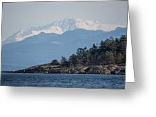 Madrona In December Greeting Card