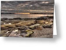 Madrona Point Greeting Card by Randy Hall