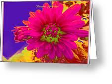 Magenta Greetings Greeting Card