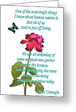 Magenta Red Rose With Butterfly And Quote Greeting Card