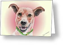 Maggie Former Shelter Sweetie Greeting Card