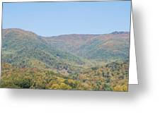 Maggie Valley In The Fall Greeting Card