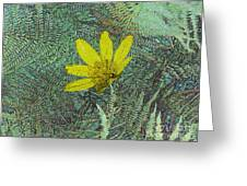 Magic Fern Flower 01 Greeting Card