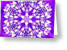 Magic Mystery Greeting Card
