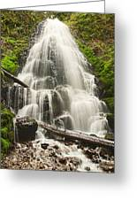 Magical Falls - Fairy Falls In The Columbia River Gorge Area Of Oregon Greeting Card