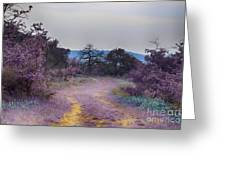 Magical Landscape Greeting Card