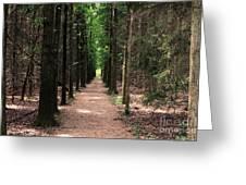 Magical Path Greeting Card