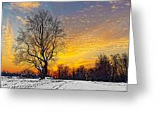 Magical Winter Sunset Greeting Card
