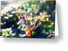 Magical Woodland - Impressions Greeting Card