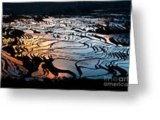 Magnificent Rice Terrace Greeting Card