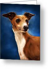Magnifico - Italian Greyhound Greeting Card by Michelle Wrighton
