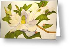 Magnolia Cluster Greeting Card