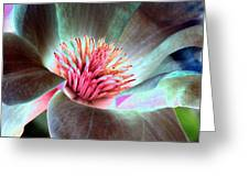 Magnolia Flower - Photopower 1844 Greeting Card