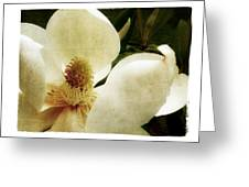Magnolia I Greeting Card by Tanya Jacobson-Smith