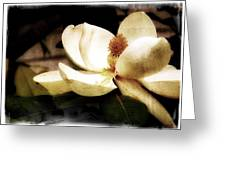 Magnolia IIi Greeting Card by Tanya Jacobson-Smith