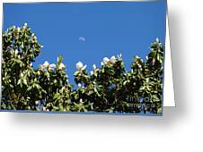 Magnolia Moon Greeting Card