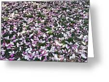 Magnolia Petals Greeting Card
